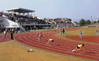陸上競技場 これらテニスコートや陸上競技場は公園事務所に申し込み予約をする必要があ... 服部緑