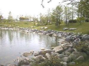稲美野散策(天満大池公園)