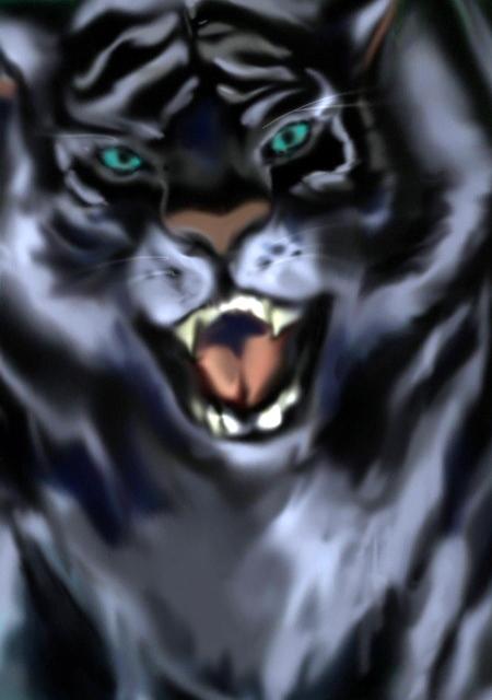 BLACK TIGER』2010年8月制作
